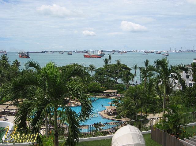 رحلتي إلى سنغافورة 2011