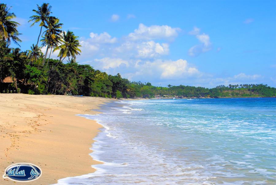 Tropical Island Beach Ambience Sound: المسافر السياحة و السفر