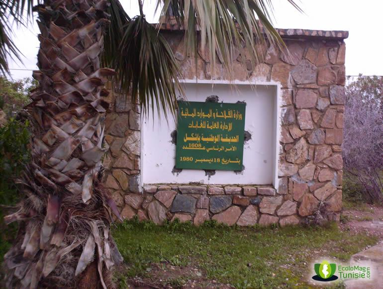 السياحة - السياحة في تونس 22869alsh3er