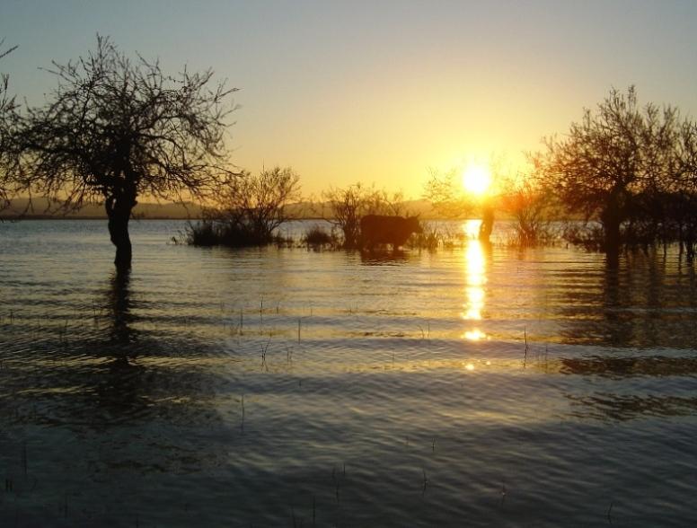 السياحة - السياحة في تونس 22873alsh3er