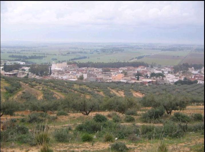 السياحة - السياحة في تونس 22880alsh3er