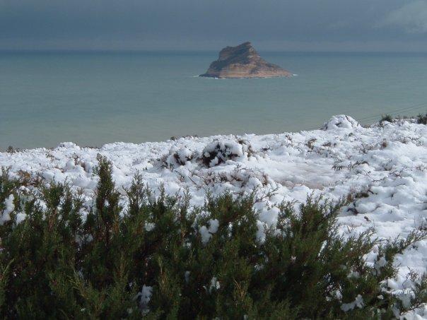 لوحة بديعة لتونس تكسوها الثلوج