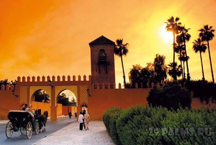 المغرب طبيعة خلابة تاريخ أصيل وتراث إنساني 69124alsh3er.jpg