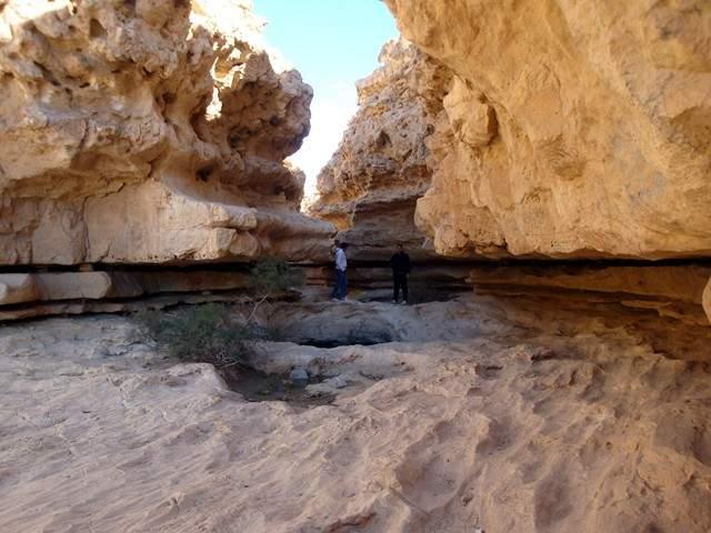 رحلة الى صحراء جبلية (محمية وادى دجلة)...تقرير كامل بالتفاصيل والصور (الجزء الثانى)) - المسافر