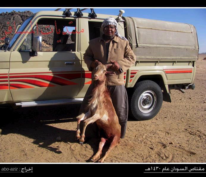 Hunting trip in Sudan 2009 روائع من مقناص السودان عام