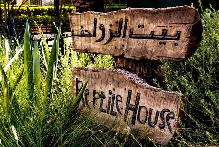 حديقة الحيوان الكويت