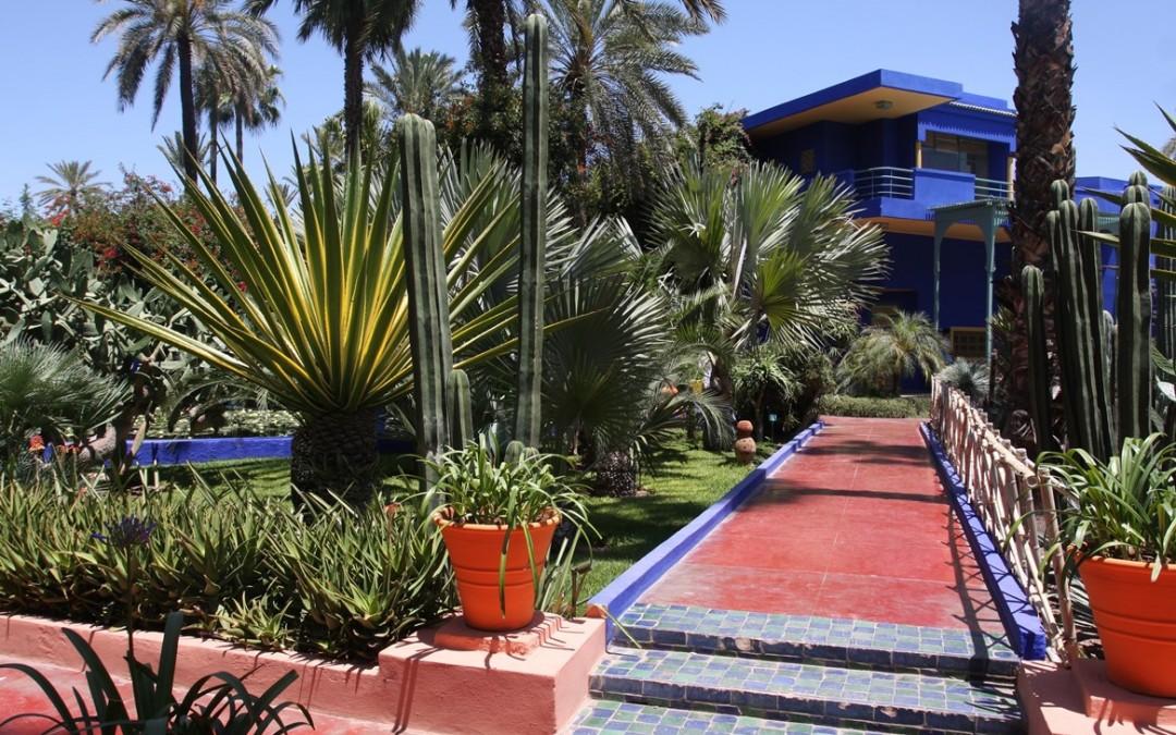 -majorelle-marrakech-jpg