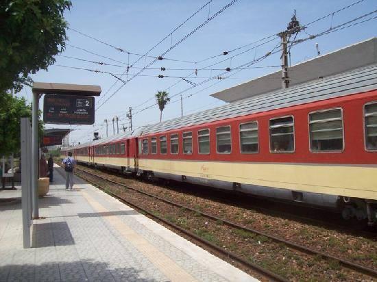 -transport3-jpg
