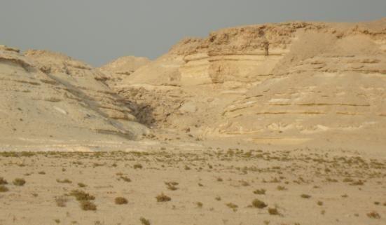 الزراعة في الأراضي الرملية
