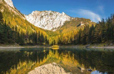 تقرير رحلة عائلة مشيع إلى النمسا ( 7 أيام )