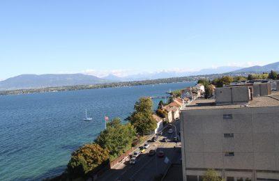 رحلتي إلى سويسرا