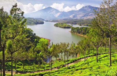 فيديو تقرير رحلتي إلى كيرلا الهند