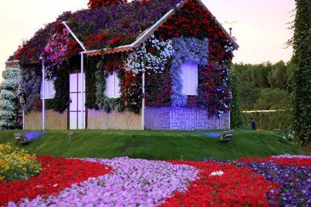 ماذا يوجد في حديقة الزهور في دبي ؟