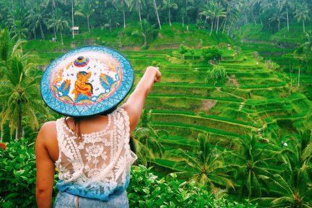 شرح حجز جولة معالم ابود الشلالات مدرجات الأرز في بالي