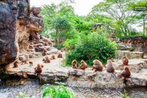 الذهاب الى حديقة حيوانات فاونيا النباتية Faunia Botanical Garden & Zoo – سوق El rastro  ض103