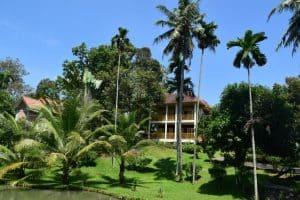 فندق ديلي ريفير ملانديا