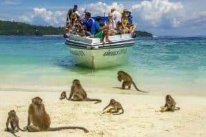 زيارة جزيرة القرود بينانج - ماليزيا - بينانج