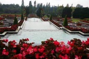 زيارة أشهر الحدائق - إندونيسيا - بونشاك