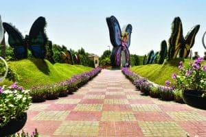 جولة على بعض الأماكن السياحية – الإمارات – دبي