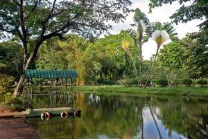 زيارة أشهر الأماكن - سريلانكا - كولومبو