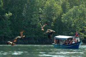 القيام برحلة بحرية - ماليزيا - جزيرة لنكاوي