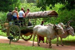 زيار أشهر الأماكن – سريلانكا – بينتوتا