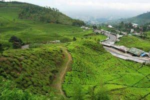 زيارة مدينة بونشاك - إندونيسيا - بونشاك