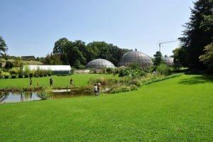 الحديقة النباتية القديمةThe Old Botanical Garden  10 3