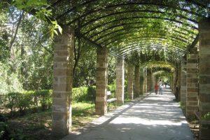 الذهاب الى تلفريك دو ساليف و الحديقة الانجليزية ج52