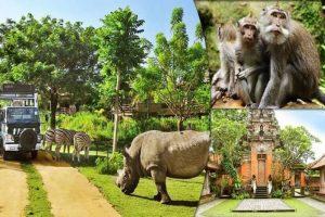 زيارة حديقة الطيور والزواحف Bali Bird & Reptile Park Tou - إندونيسيا - جزيرة بالي