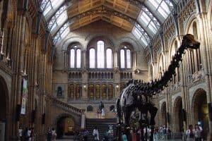 جنيف - متحف التاريخ الطبيعي  ج1