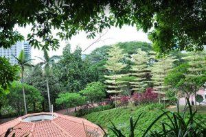 ذا شنجى the changi museum -يوم سياحي كامل في منتزه فورت كانينغ الجميل س107