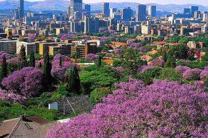 يوم سياحي رائع في جنوب افريقيا في مدينة بريتوريا  ايضاً ج108