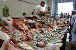 سوق طنجة للسمك