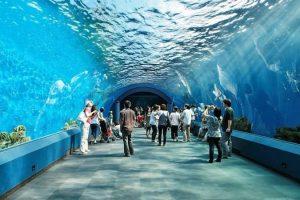 زيارة أشهر المعالم السياحية في بتايا - تايلاند - بتايا