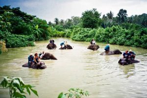 التجول في مدينة بتايا - تايلاند - بتايا