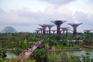 حدائق الخليج  - الحديقة النباتية - عجلة سنغافورا  س51
