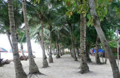 تقرير رحلتي لجزيرة بوراكاي