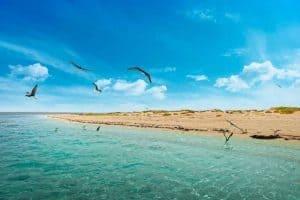 زيارة جزيرة فرسان وجبال فيفا - السعودية - جازان