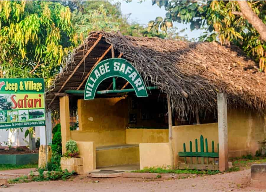 سفاري القرية village safari