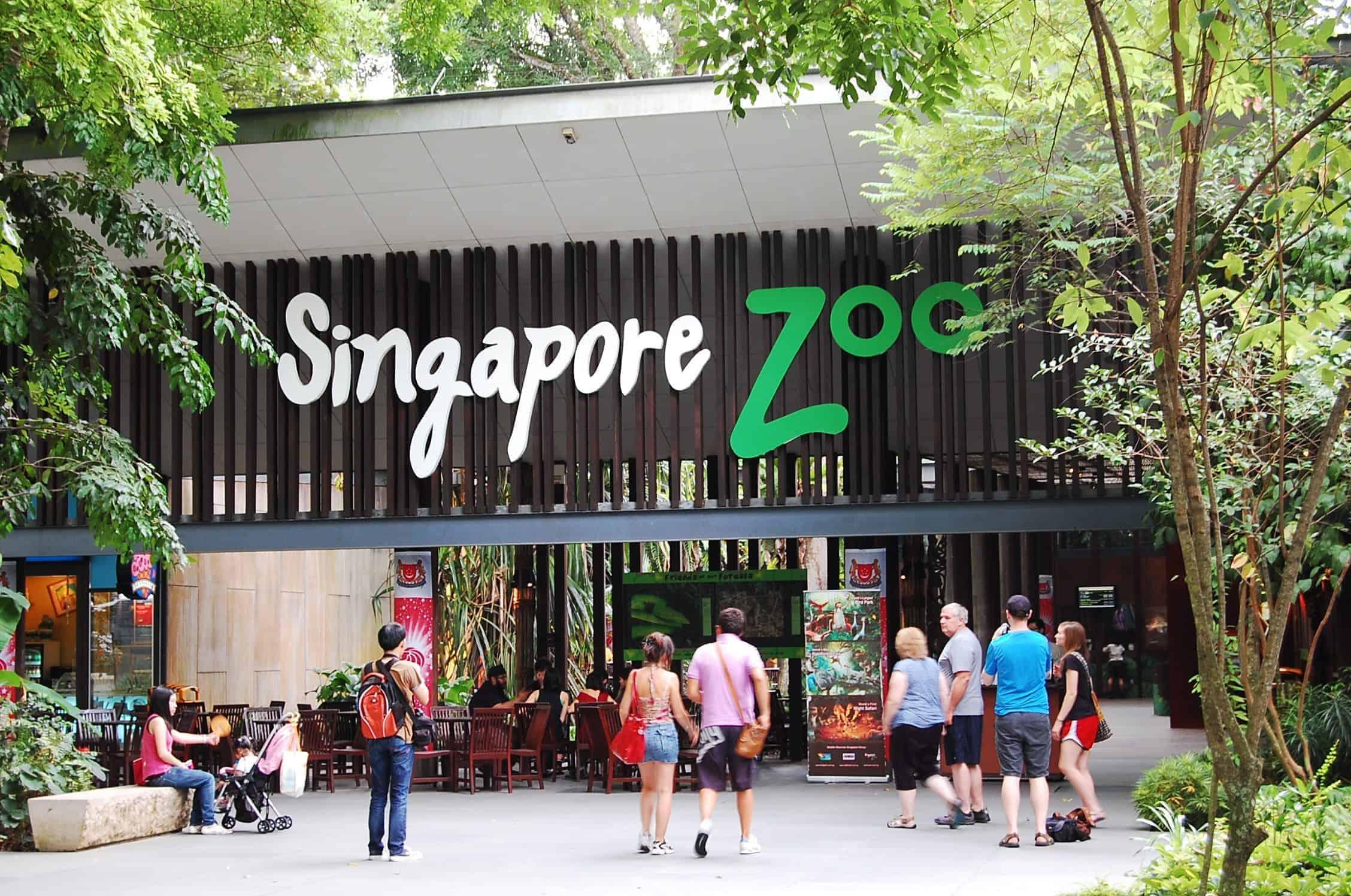 سنغافورة زوو