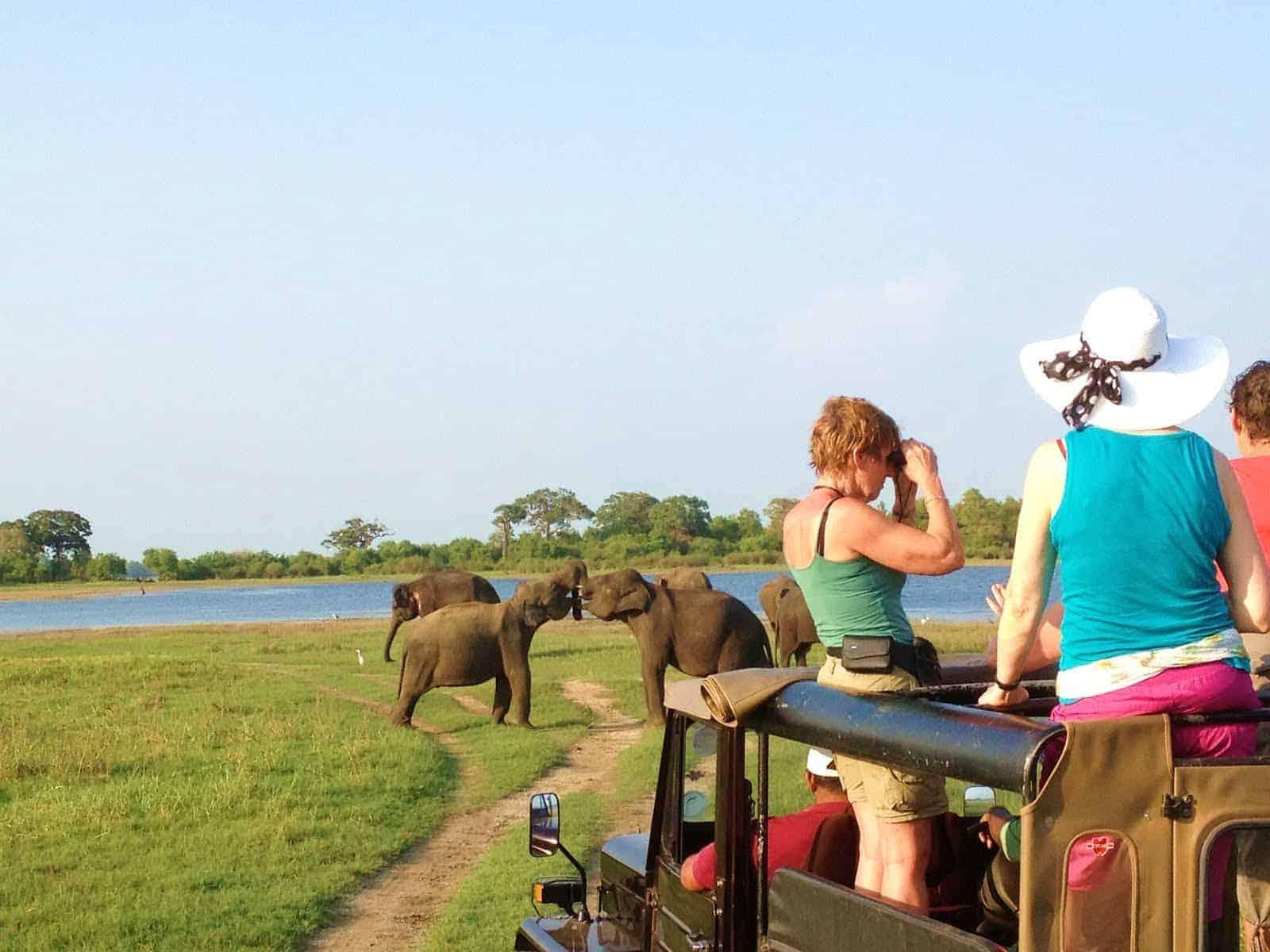 محمية الأفيال