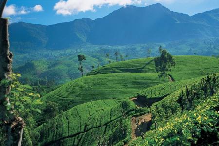 اهم المدن السياحيه في سريلانكا