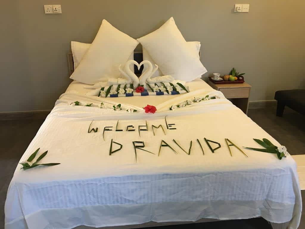 5.فندقDravida