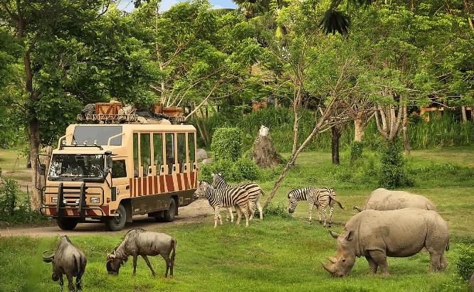 الاماكن السياحية bali-safari-and-mari