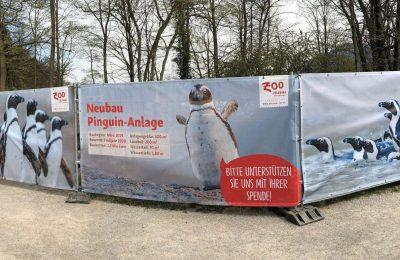 افضل الأنشطة في حديقة حيوانات سالزبورغ النمسا