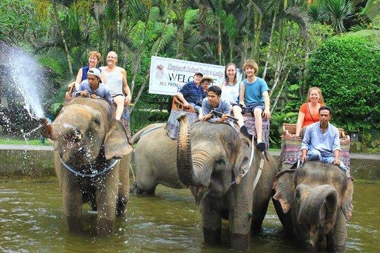 زيارة حديقة الفيل في جزيرة بالي