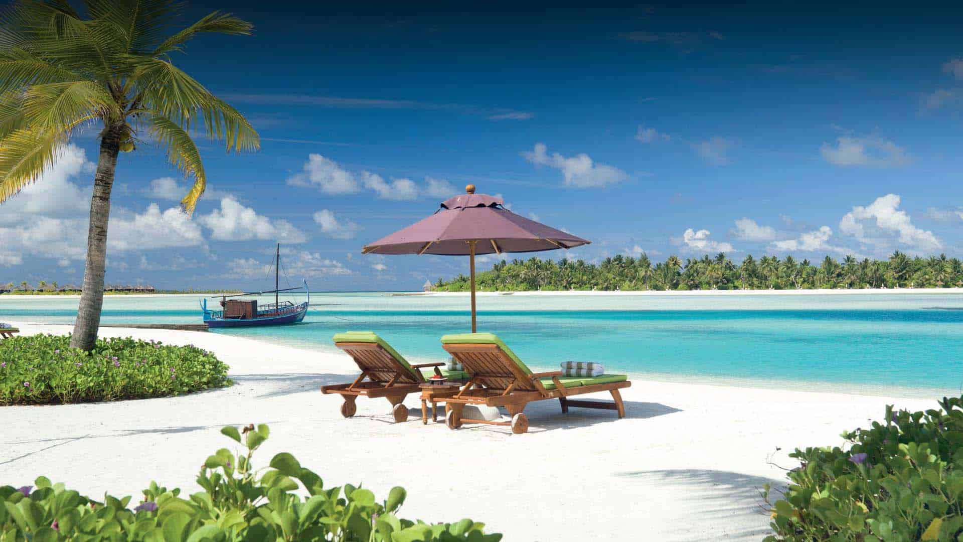 خلاصة تجربتي الشخصية في جزر المالديف