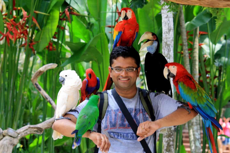 زيارة منتزه بالي للطيور – جزيرة بالي