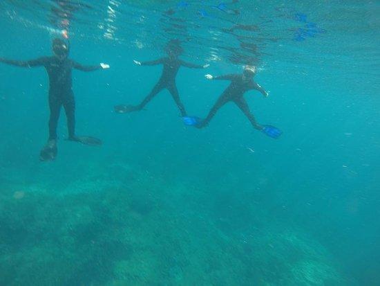 معرض الغوص – جزيرة بالي